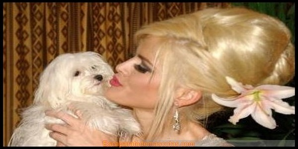 Anna Nicole Smith y Marilyn